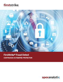 firststrike Fraud Detect Brochure Cover