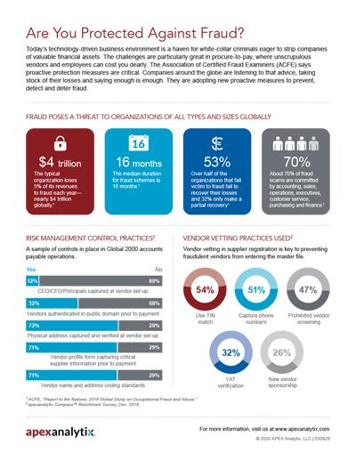 Vendor Vetting & Risk Management Control Fraud Infographic Image
